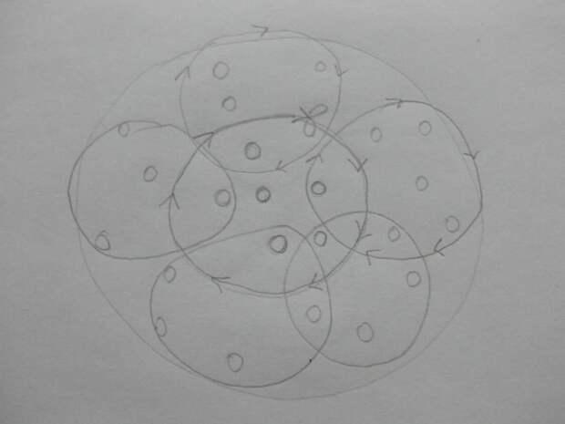 Схема подвязывания высоких кустов. Рисунок автора