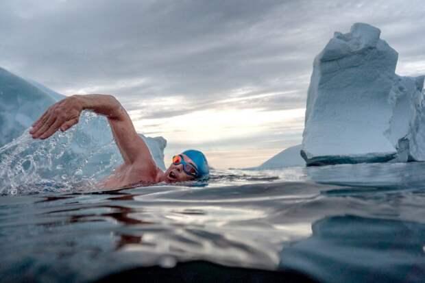 Британский спортсмен проплыл 8 км в ледяных водах Гренландии ради защиты Арктики