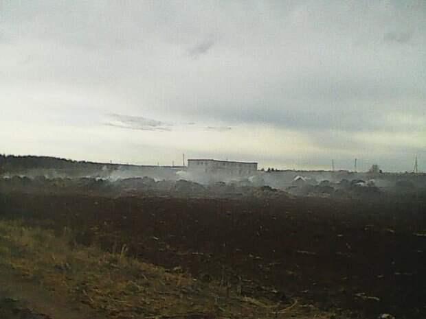 В Пермском крае две школьницы сожгли ферму, снимая ролики для TikTok