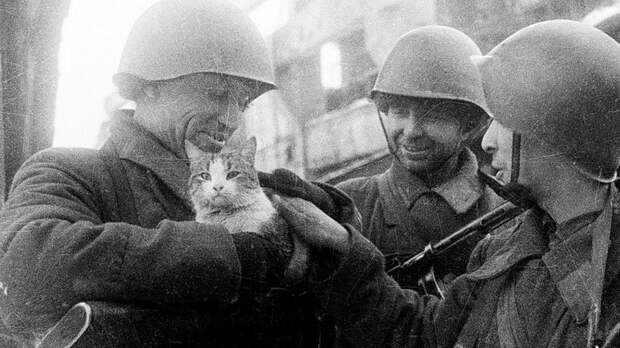 Победа в цифрах: факты о Великой Отечественной войне