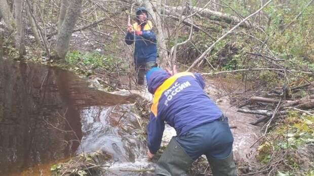 Спасатели продолжили поиски пропавшего главы минздрава Мураховского с помощью дрона