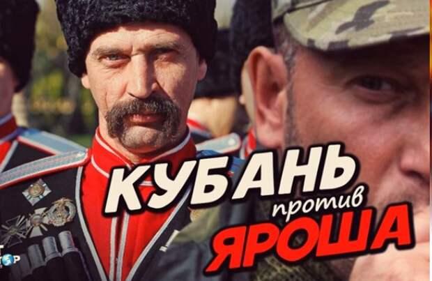 Жителей Кубани спросили: Как будете встречать танки Яроша?