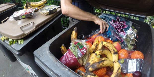 В Англии заработало приложение для заказа еды из «мусорных баков»