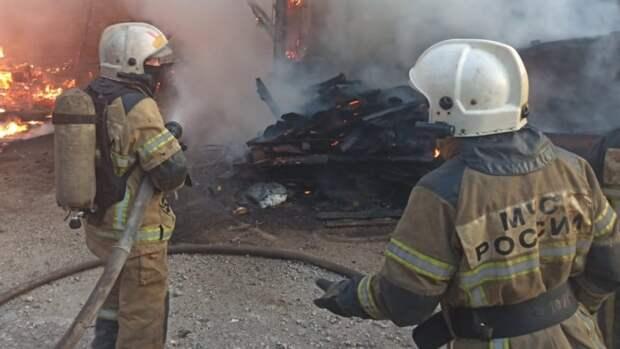 Почти три десятка человек эвакуировали из-за природных пожаров под Тюменью