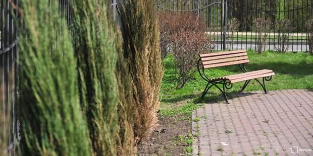 На Кашенкином лугу починили урну и скамейку