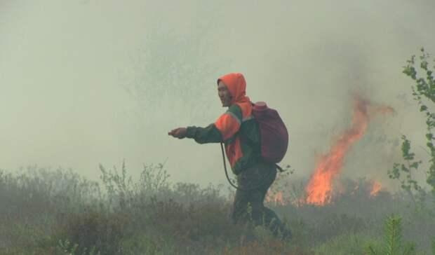 Ямальские спасатели помогут втушении пожаров вТюменской области