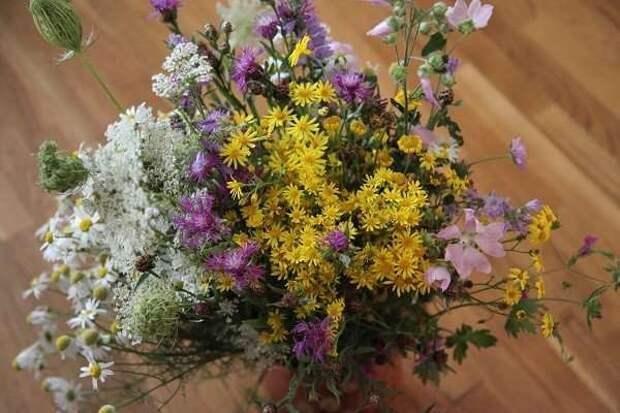 Деревенское лето: в гостях у бабушки