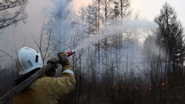В России за сутки ликвидировали 111 природных пожаров