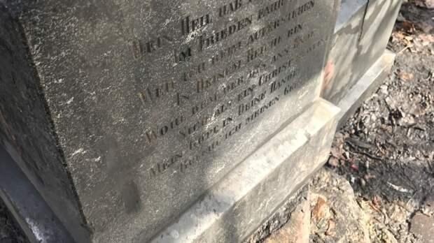 Тело новорожденного обнаружили на кладбище в Челябинской области