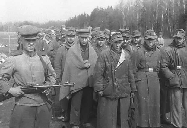 В каком сражении красноармейцы пленили больше всего немецких солдат