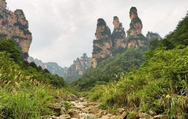 Национальный парк Чжанцзяцзе в Китае (19 фото)