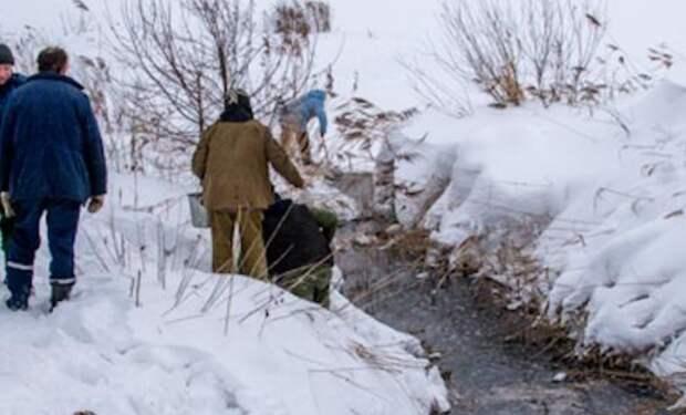 Под Рязанью рыбаки массово ловят задыхающуюся рыбу