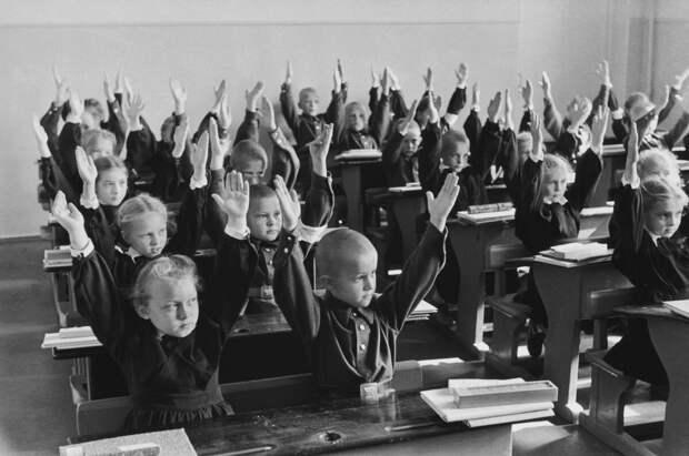 Матвей Северянин и отзывы о проблемах образования.