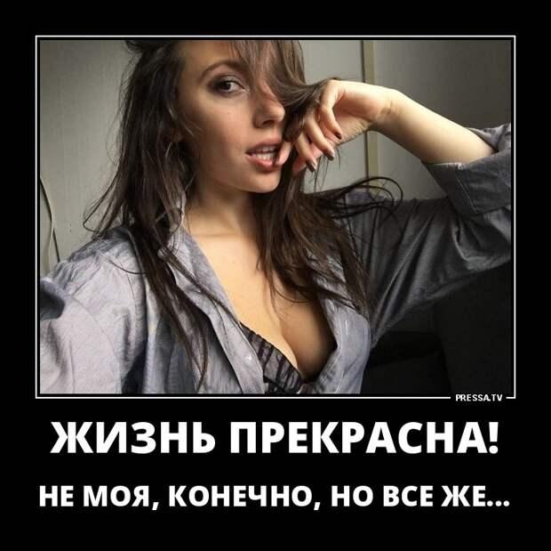 Из объяснительной:  - Встал утром, глянул в зеркало - сам себя не узнал...