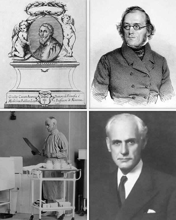 Хирург-инженер, или История знаменитой операции