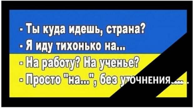 Ошибка «Зе-режима»: очередной НАТО-провал Украины