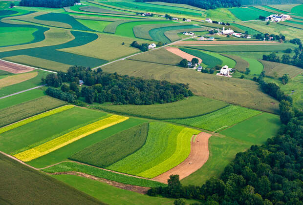 6 сельхоз инноваций, которые спасут мир