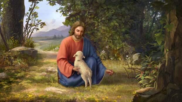 Притча Иисуса о заблудшей овце: постарайтесь понять притчу – это поможет вам