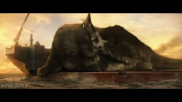 Годзилла против кошки: монтажер заменил Конга на свою Лиззи — и мир стал добрее