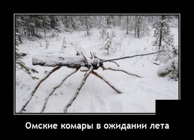 Демотиватор про комаров