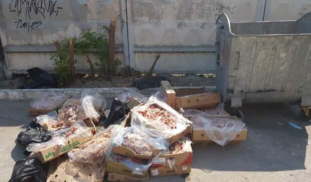 В Тюмени около контейнерной площадки на Комсомольской решили утилизировать биоотходы