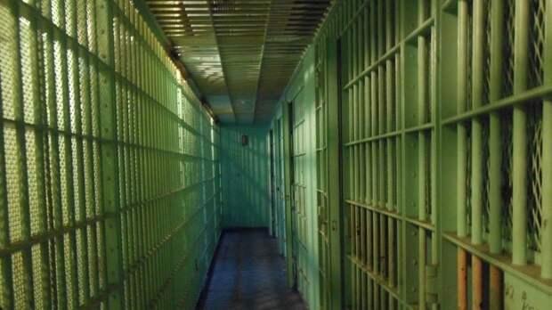 Волгоградка и ее сожитель отправились в тюрьму за истязания ребенка