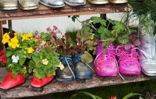 Старая обувь становится подходящим и креативным вместилищем для растений. /Фото: i.pinimg.com