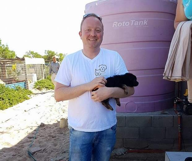 Мужчина нашел умирающую от голода собаку на необитаемом острове