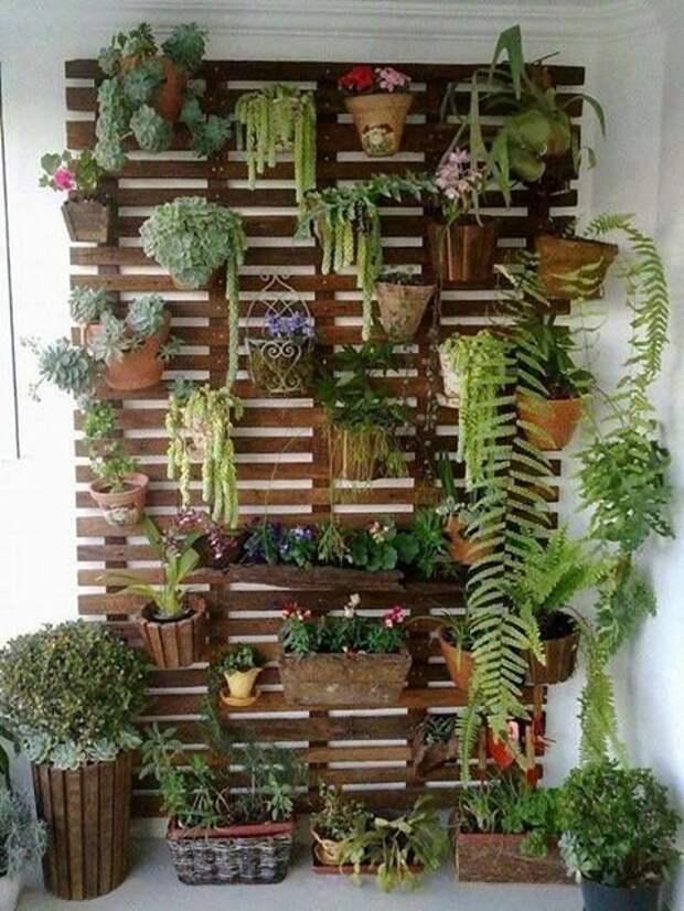 или вот такую основу зеленый, лестницы, полки, растения, этажерки