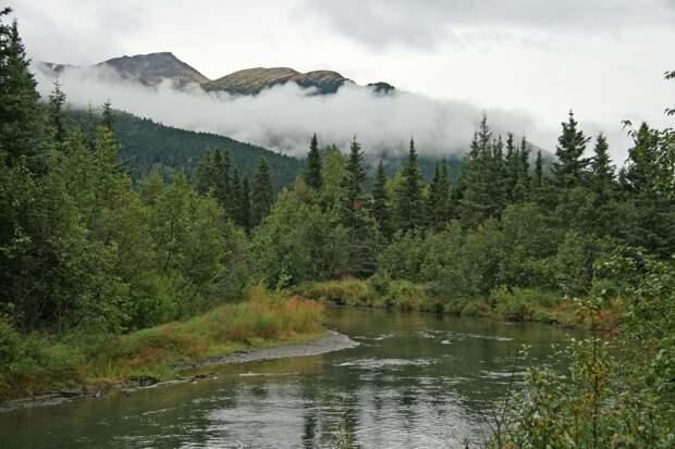 Аляска, природа, фото https://pixabay.com/ru/