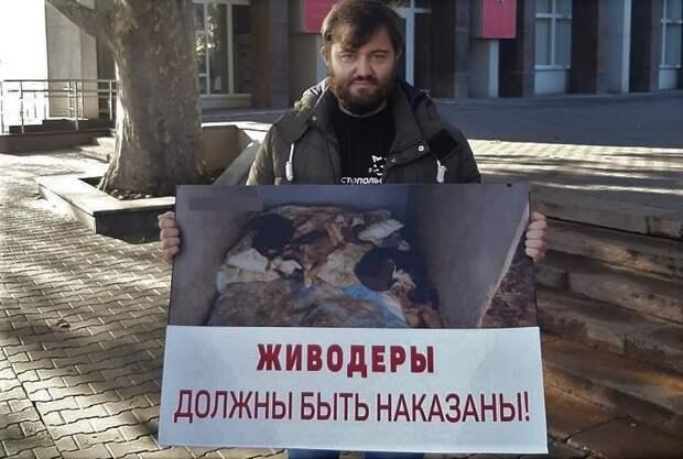 Севастопольцы вышли на пикеты с требованием наказать живодеров