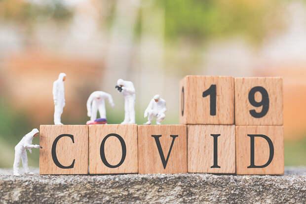 Учёные рассказали, как распространяется коронавирус