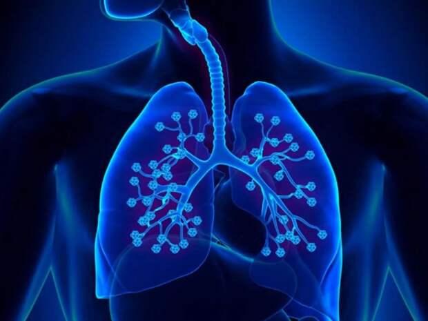Пневмонолог из Германии рассказал о разрушении легких у разных людей из-за коронавируса