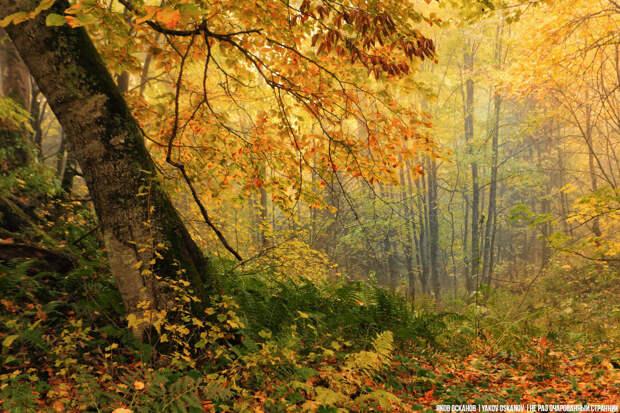 Осень в Адыгее