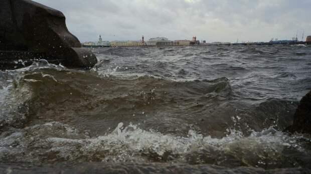 Циклон «Guido» принесёт в Петербург дожди и сильный ветер