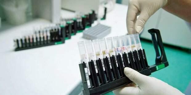 Москва — первая в России по количеству тестов на коронавирус