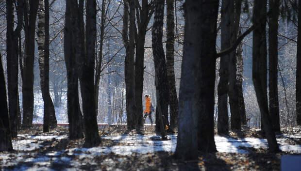 Подготовка парков к весенне‑летнему сезону началась в Подмосковье