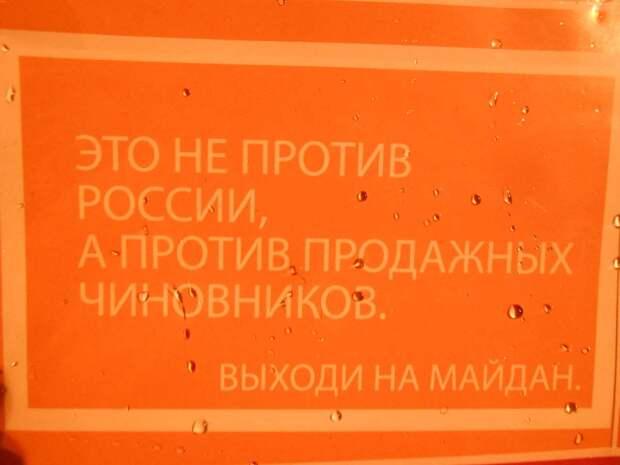 Посольство США: Евромайдан изначально был против России