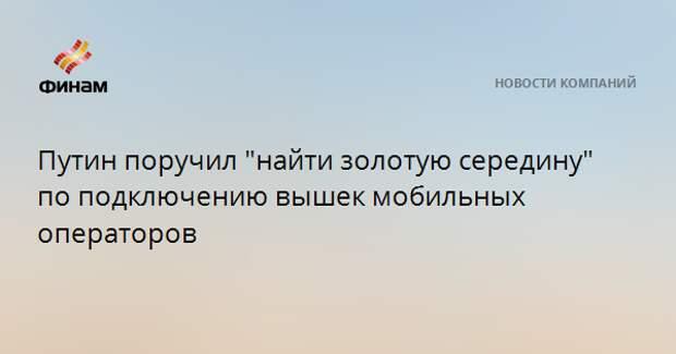 """Путин поручил """"найти золотую середину"""" по подключению вышек мобильных операторов"""