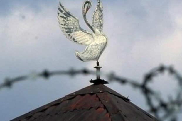 Тайники сидельцев тюрьмы Белый Лебедь