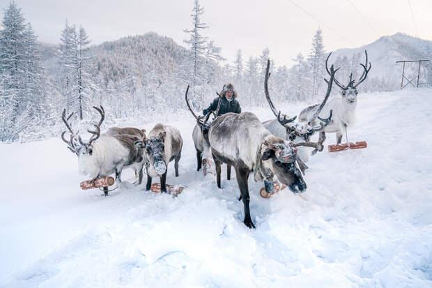 Как якутские «моржи» греются на морозе