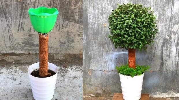 Чудесное живое деревце из самых простых материалов