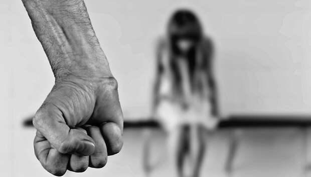 В комитете Мособлдумы отметили важность института защиты пострадавших от домашнего насилия