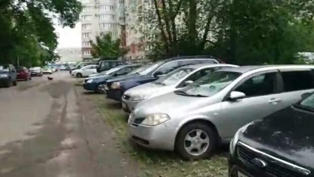 Российские автовладельцы с 1 мая могут продавать машины в режиме онлайн