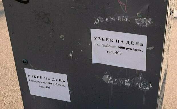 В поисках работы в россии, надпись, объявления, прикол, смешно, смешные объявления, фото