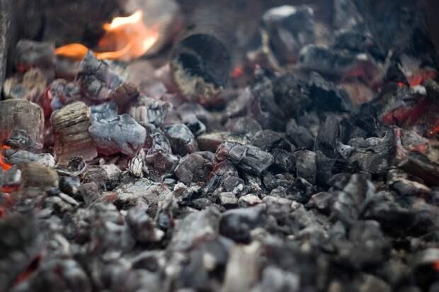 Зарезал и сжег: жителя Удмуртии обвинили в жестоком убийстве