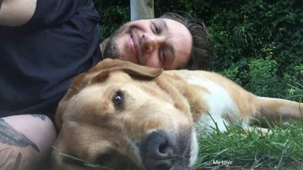 «Люблю тебя бесконечно». Том Харди рассказал о смерти своего любимого пса Вудстока