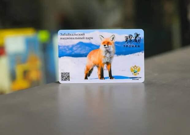 Транспортные карты с изображением байкальской лисички появились в московском метро