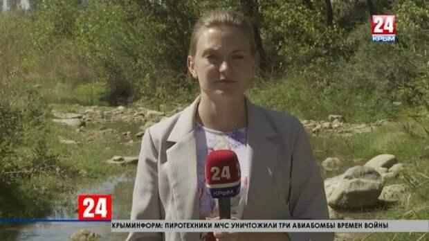 Будет ли меняться набережная реки Салгир за пределами столицы Крыма?