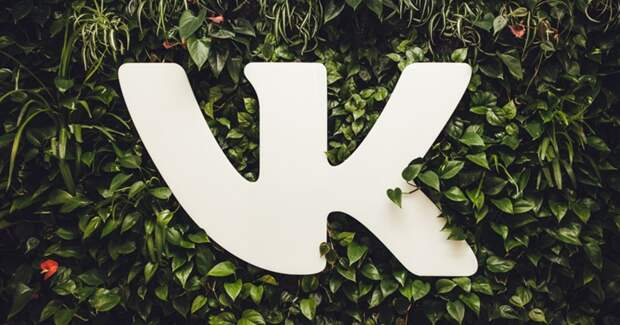 «ВКонтакте» и ВШЭ нашли взаимосвязь между числом подписчиков и одержимостью лайками